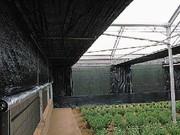 Сетки для защиты растений.