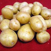 Предлагаем картофель!