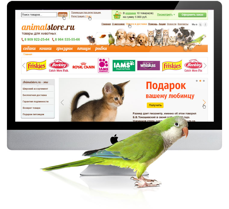 Дизайн сайта доска объявлений