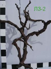 Натуральные лианы,  корни и лоза