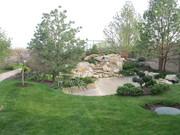 водоемы и озеленение,  сад на крыше