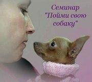Пойми свою собаку.