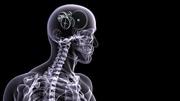 Рентген на дому - услуга от клиники Альтмедика