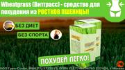 Экстремальное похудение с Wheatgrass