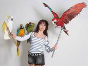 Уникальное экзотическое Шoу с попугаями
