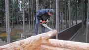 Занимаемся строительством деревянных домов.