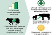 Продается С.У.П–углеводный пребиотический корм(повешение продуктивност