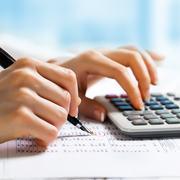 Профессиональный бухгалтерский учет,  сдача отчетности