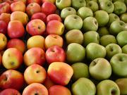 Оптовые поставки яблок из фермерских  хозяйств  Краснодара
