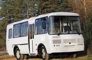 Аренда автобусов ПАЗ на 24 сидячих места