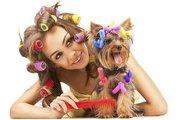 Стрижки собак и кошек в салоне и на дому