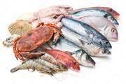 Оптовая продажа рыбы и морепродуктов