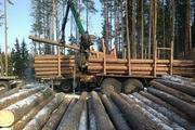 Строевой лес на сруб с погрузкой на транспорт