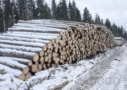 Круглый лес на строительство срубов с доставкой