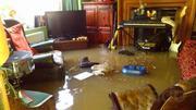 Просушка квартир,  домов,  подвалов,  потолков,  полов,  помещений